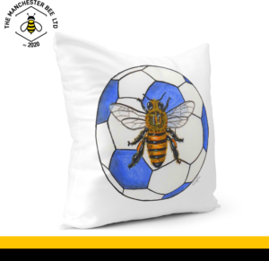 Blue Football Bee Cushion Cover 40cm x 40cm